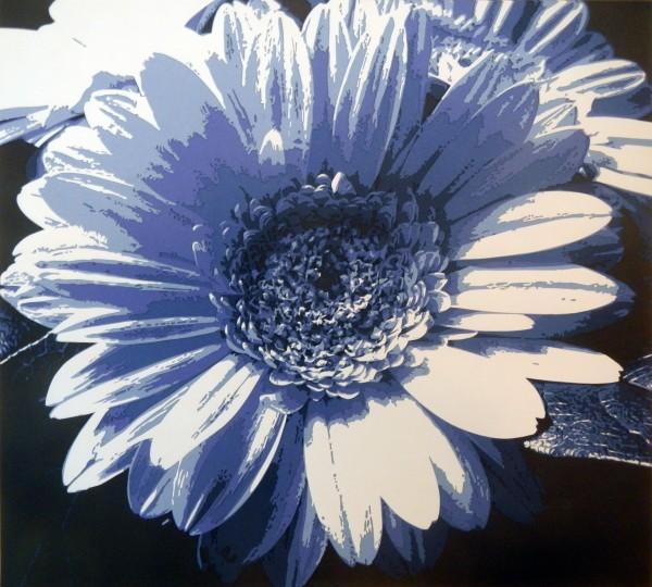 Gerbera Daisy (Blue)